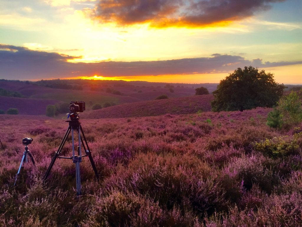 Making of - Timelapsen Film WILD